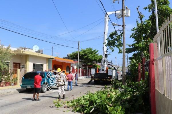 CFE inicia trabajos de mantenimiento de instalaciones en Nanchital