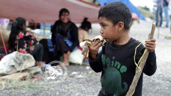 Derechos de niños en México son vulnerados por la inseguridad: CNDH
