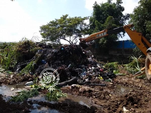 Desazolve de arroyos evita desbordamientos en Minatitlán
