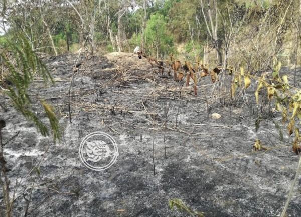 Suman más de 200 incendios en Poza Rica durante 2019
