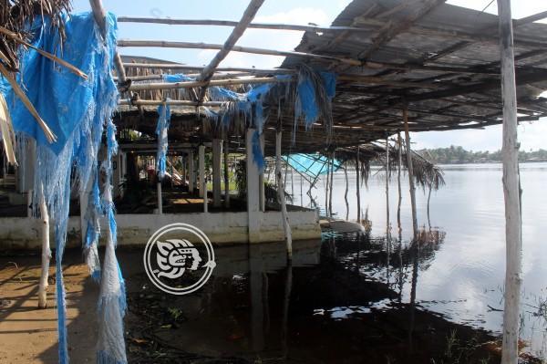 Frentes fríos dañan zona restaurantera en Tonalá